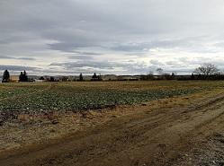 Stavební pozemek Stochov