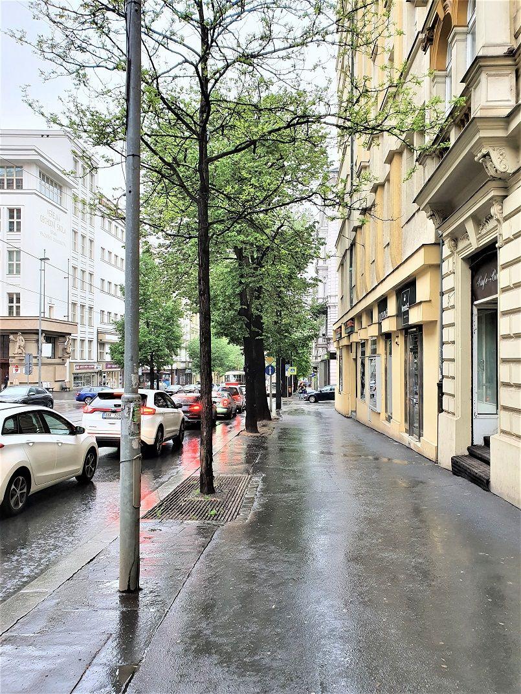 Kavárna, bar k pronájmu 52 m2, Praha 2  Vinohrady