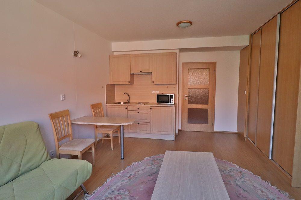 Pronájem bytu 1+kk, 35m2, Praha 7 - Holešovice