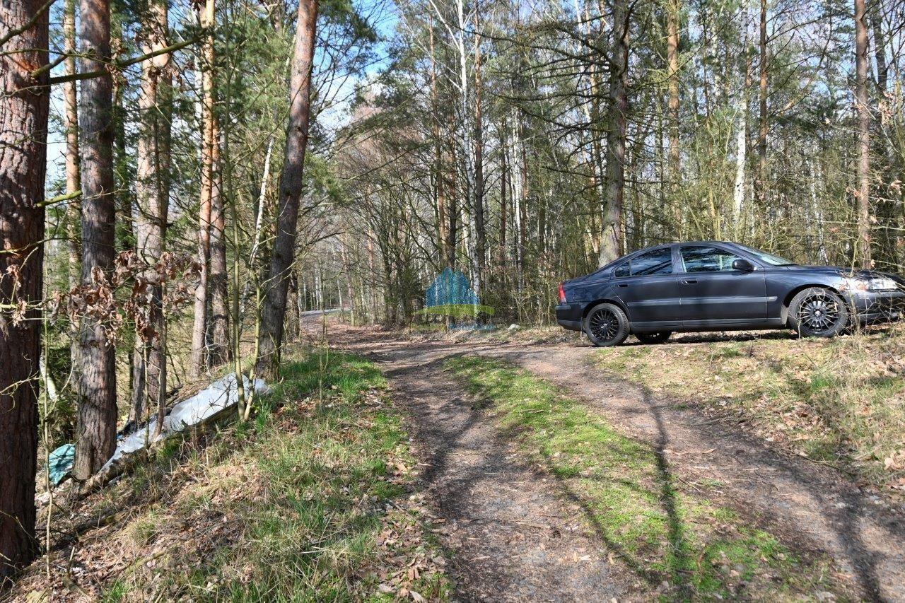 Pozemky vhodné na výstavbu malé vodní plochy (rybník) nedaleko Františkových Lázní na prodej