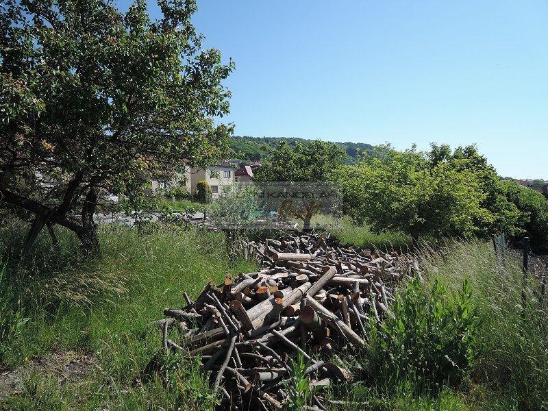 Pozemek k bydlení v obci Viničné Šumice - obr.pozemek7