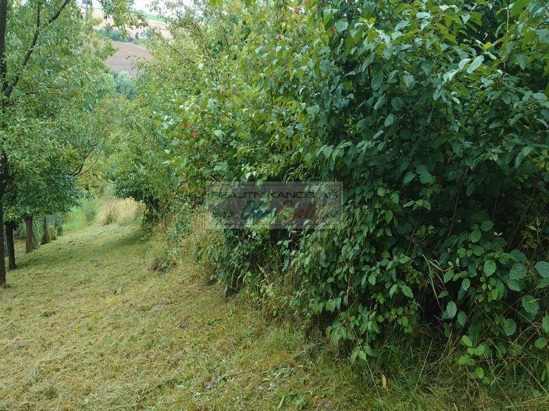 Prodej zahrady v k.ú. Soběchleby, okr. Přerov - obr.soběchleby 4