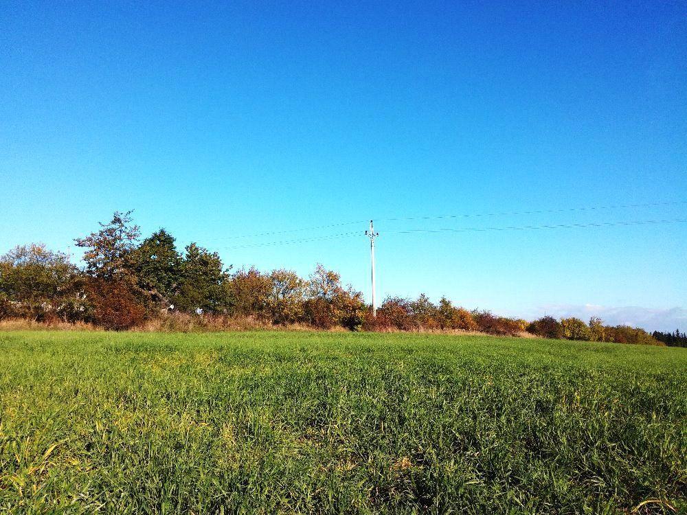 Prodej pozemků v Suchdole