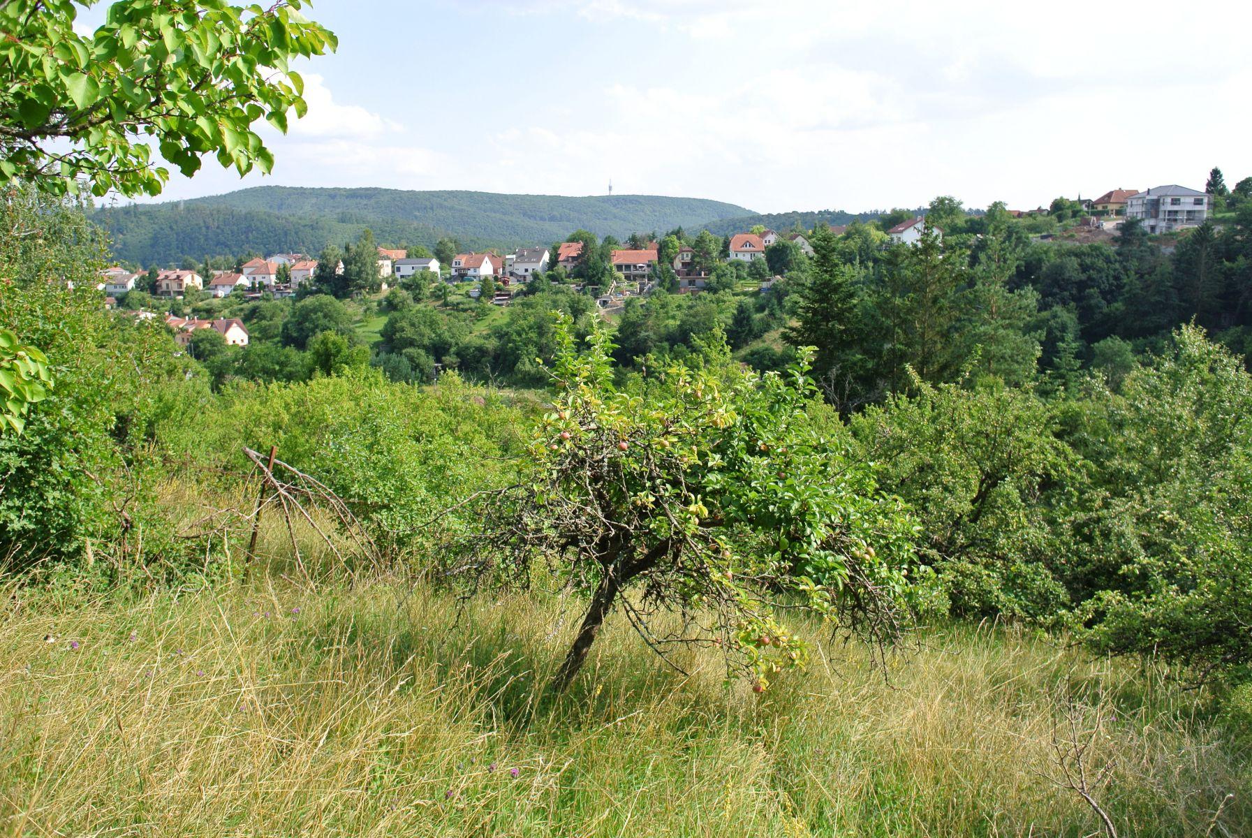 Prodej zahrady 1768m2 na velmi klidném místě s krásným výhledem