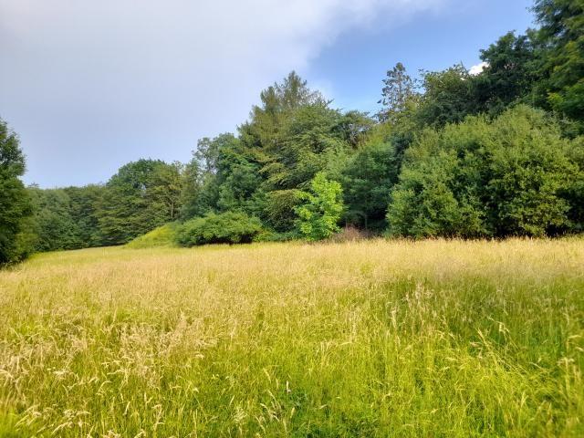 Prodej pozemku/louka, 1000 m2, Kopřivnice