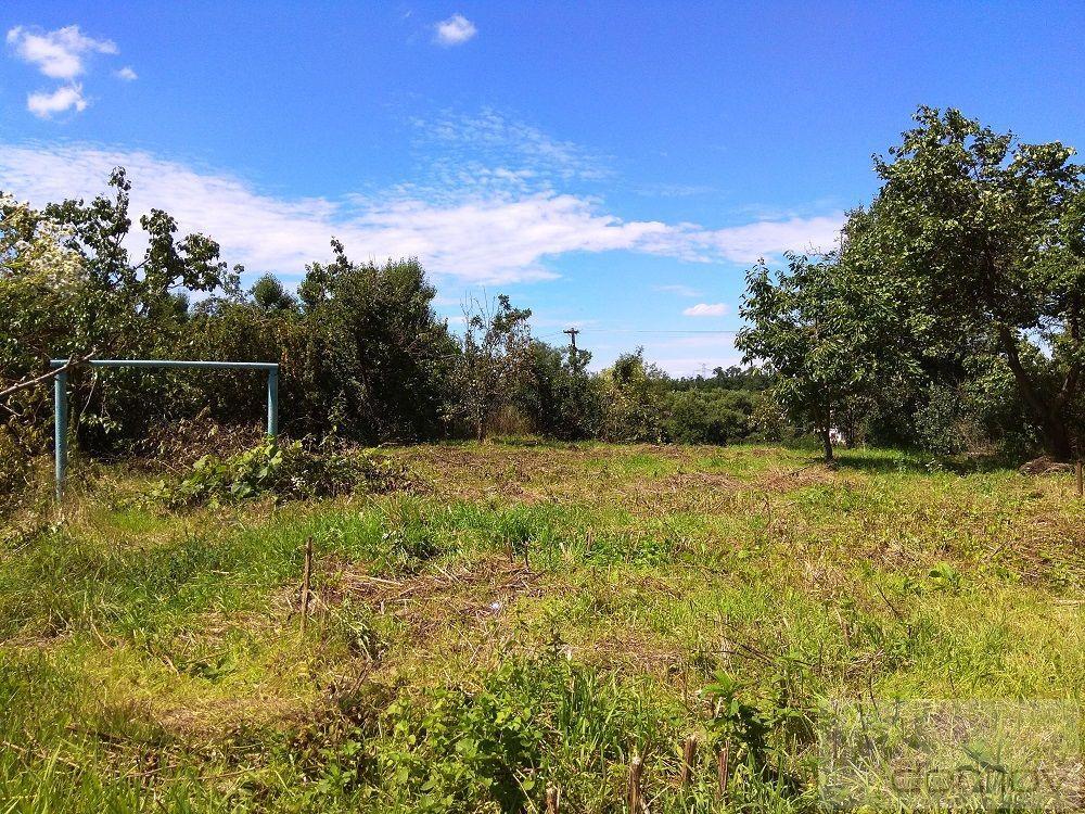 Prodej pozemku v Ledcích u Židlochovic
