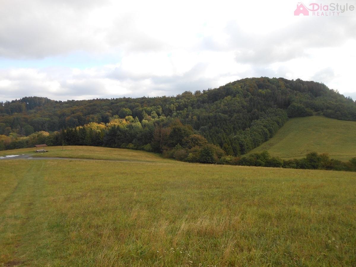 Prodej lesních pozemků v Kojetíně,  11 009 m2