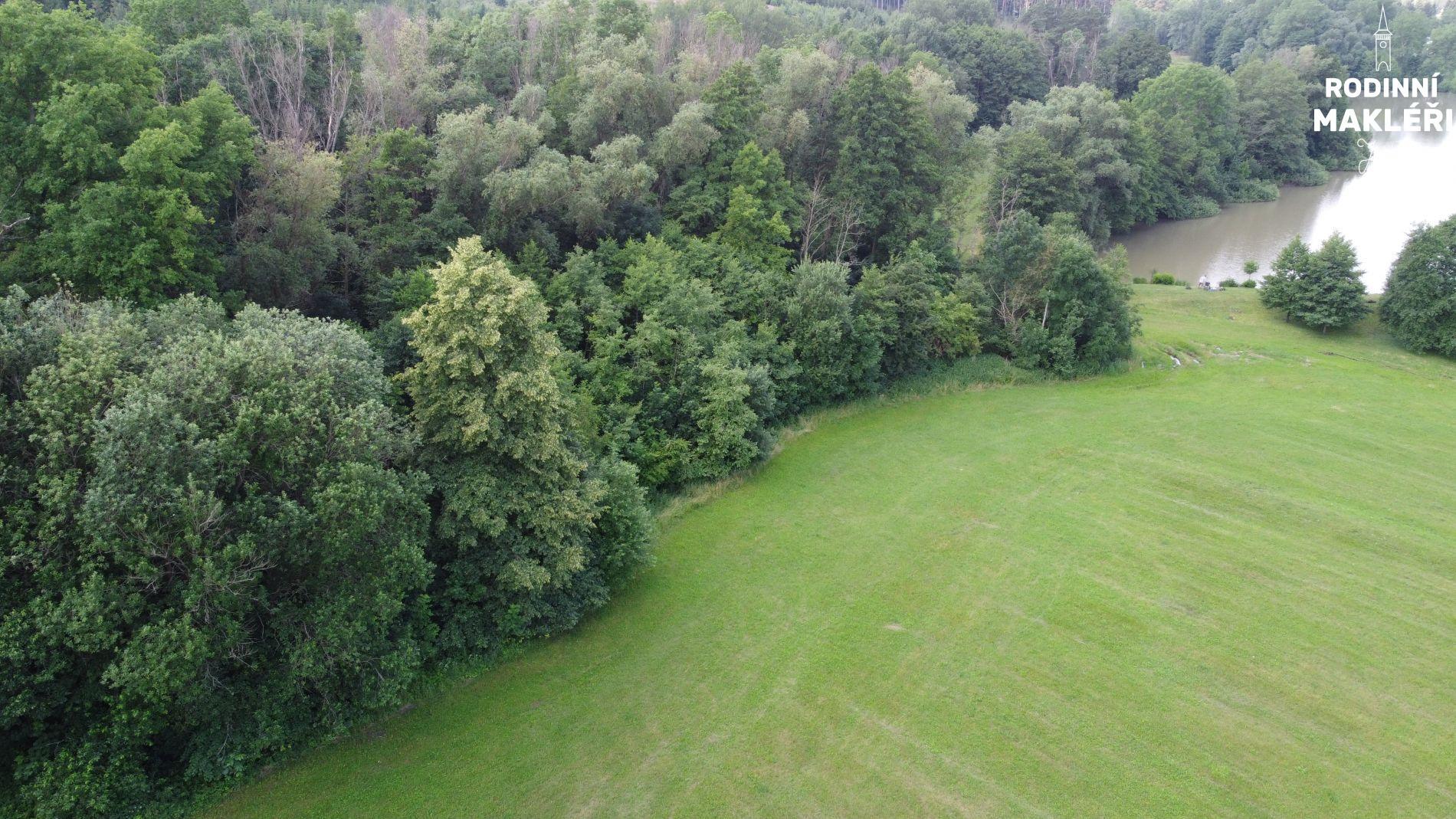 Trvalý travní porost u lesa v Českém ráji u Jinolických rybníků
