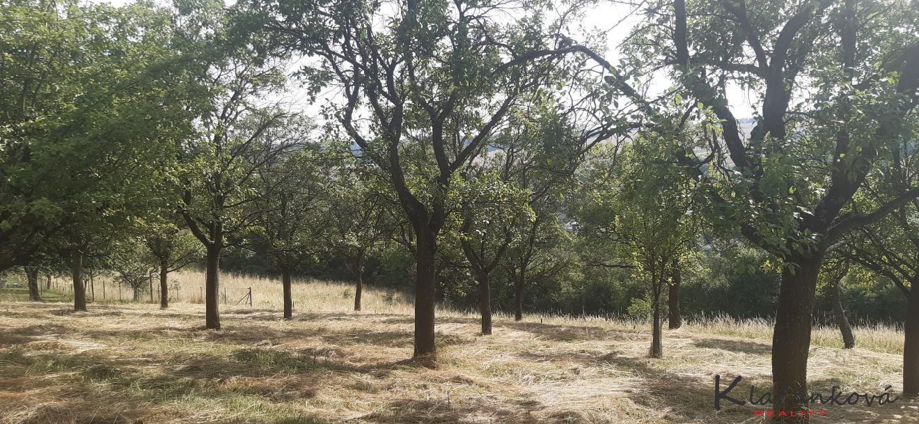 Prodej  pozemku - zahrada 877m2 Halenkovice