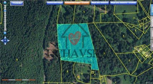 Prodej lesního pozemku,Metylovice