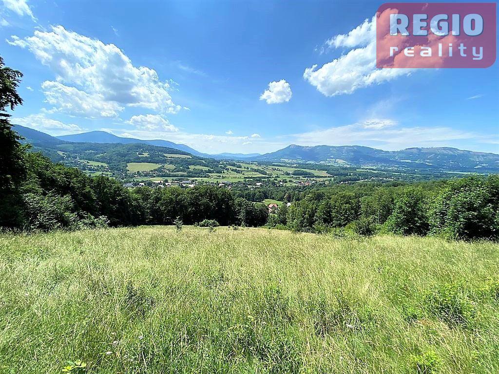 Prodej pozemku 18.962m2, Ostravice