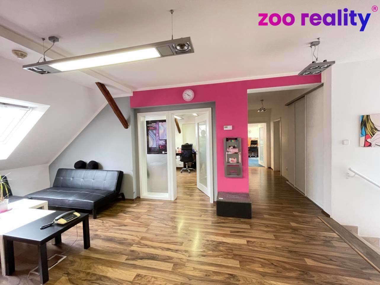 Pronájem nebytových prostor, 310 m2, Chomutov, Na Bělidle ul.
