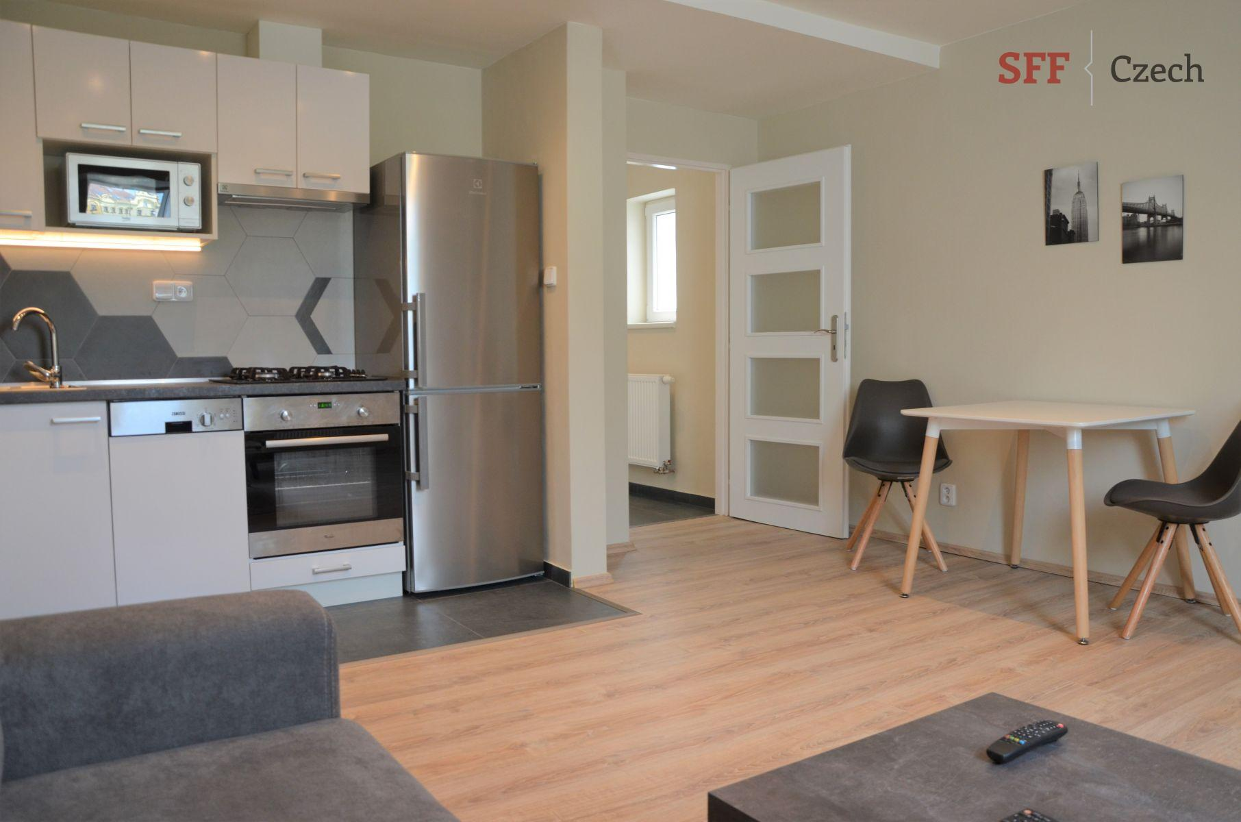 Nice modern furnished 1 bedroom apartments to rent Prague 2 close to Tylova namesti