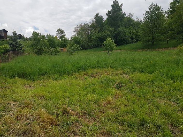 Pronájem ( pacht) zahrady o výměře 415 m2 v centru obce Mikulovice