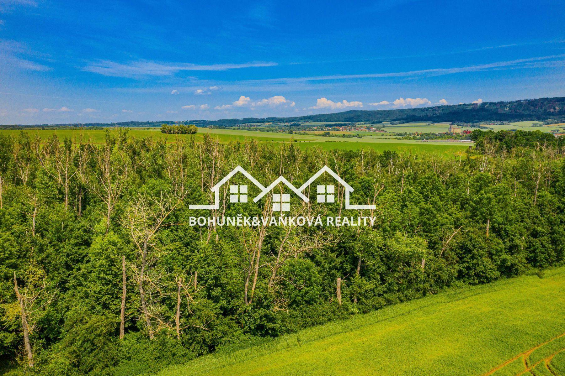Prodej lesa, 10691 m2, Ronov nad Doubravou