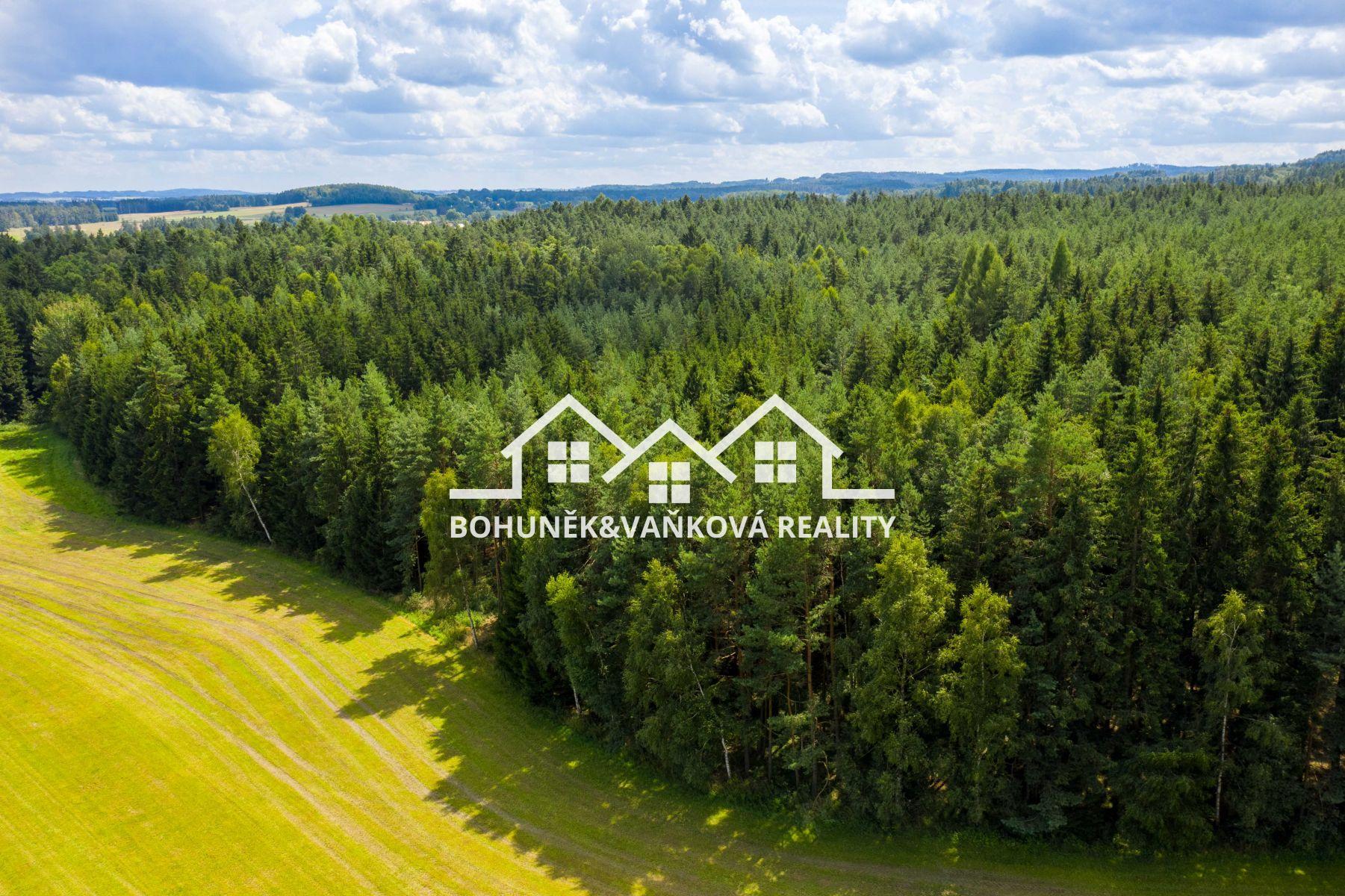 Prodej lesa, 13238 m2, Nová Ves u Světlé